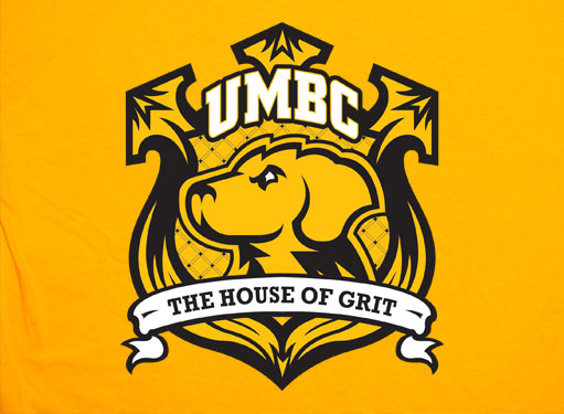 UMBC Undergraduate Viewbook